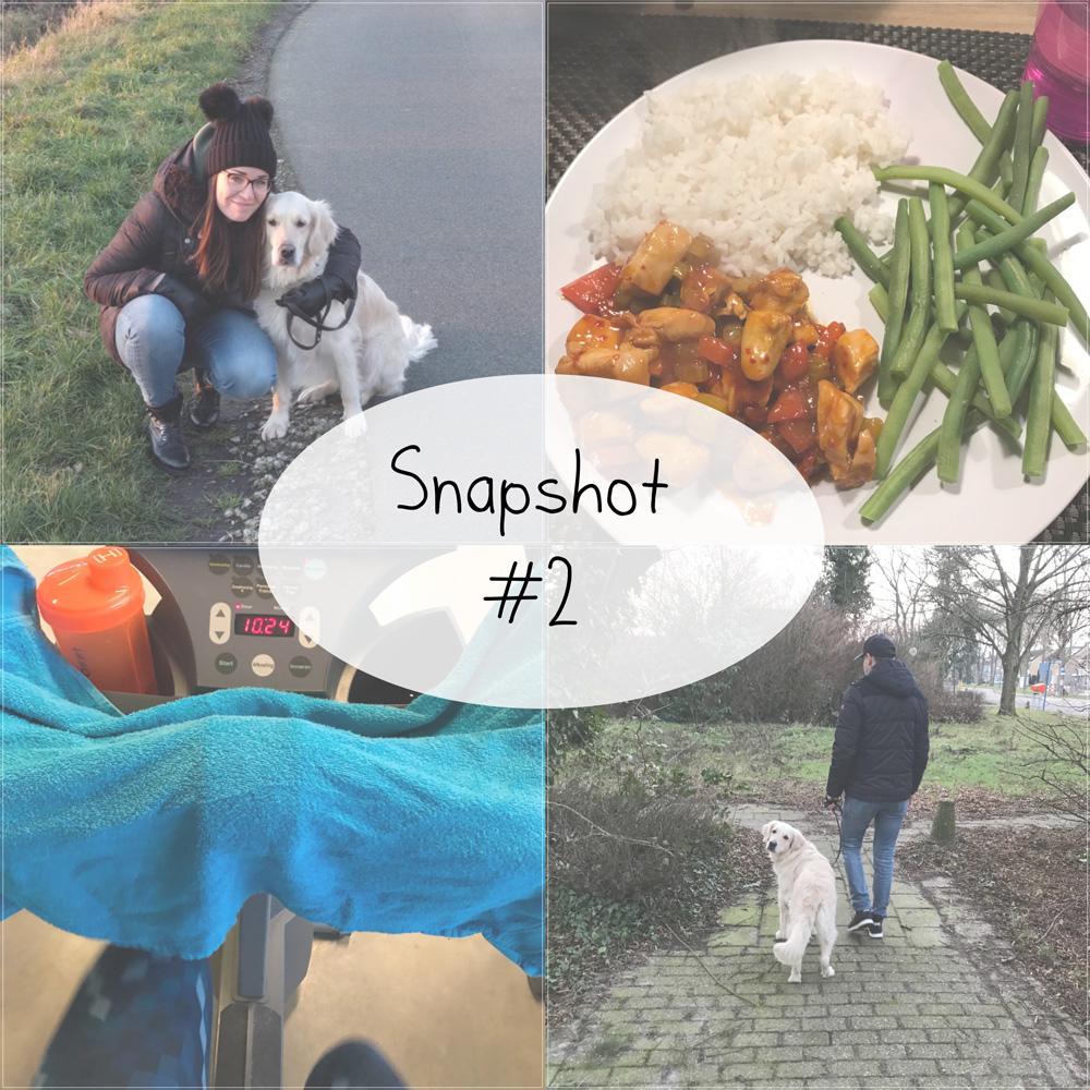 Snapshot 2018