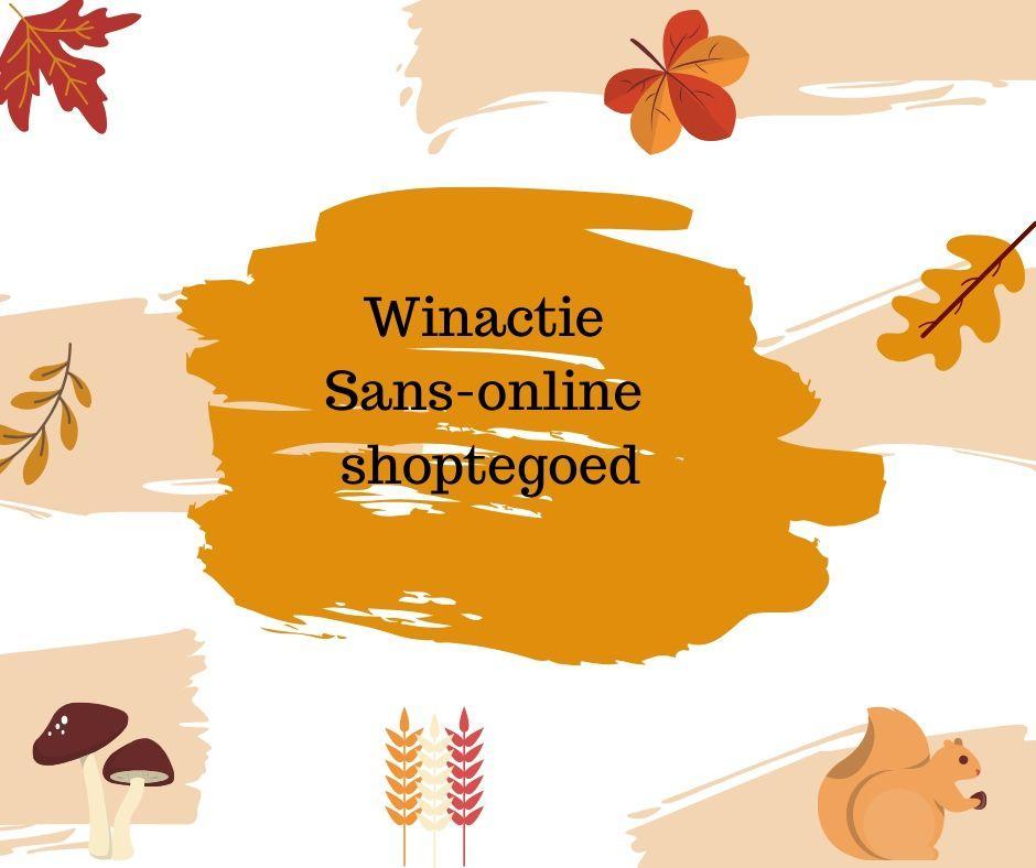 Sans-online shoptegoed